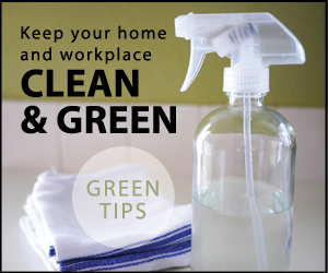 DIY Office Green Cleaners.jpg